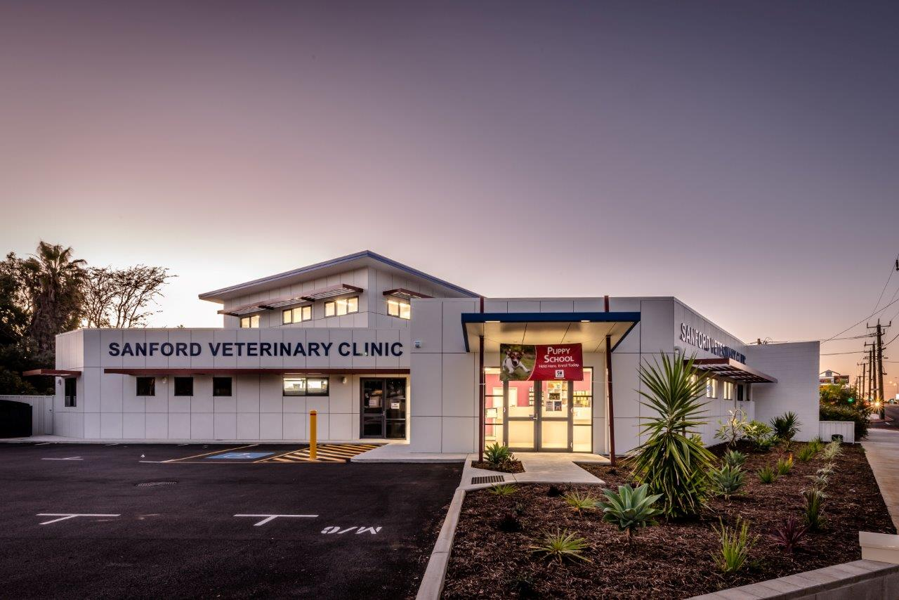 Sanford Vet Geraldton (4)